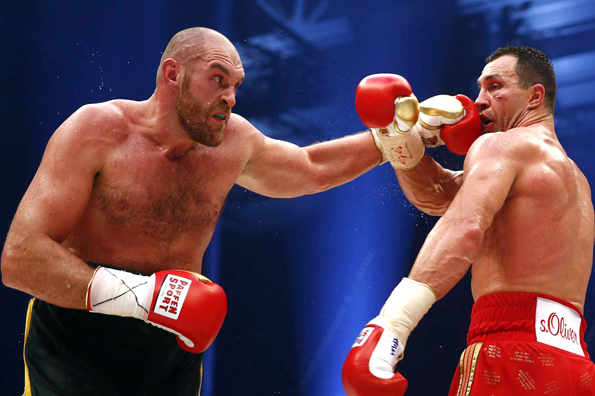 Boxeador Fajador Fury