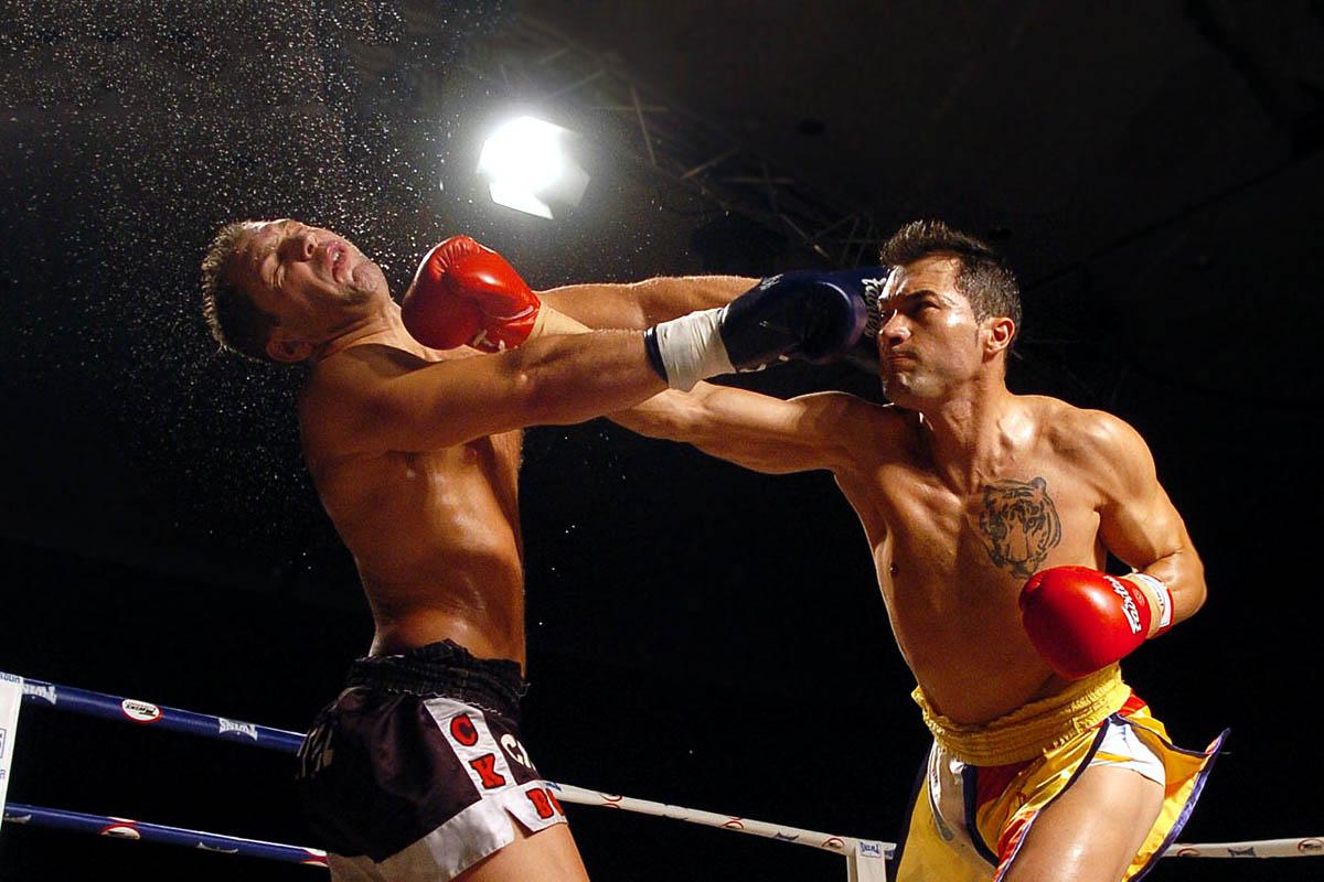 Boxeador mixto
